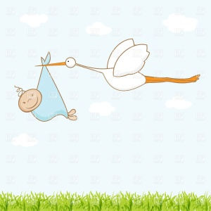 baby-boy-stork-clipart-wallpaper-stork-and-baby-boy---announcement-card-people-download-royalty