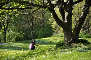 9533475-Little-girl-picking-flowers-under-a-beautiful-tree-in-spring-Stock-Photo