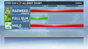 allergy16x9