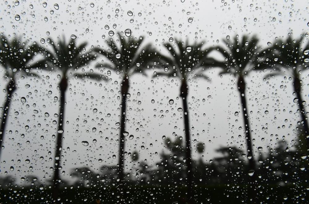 la-in-the-rain