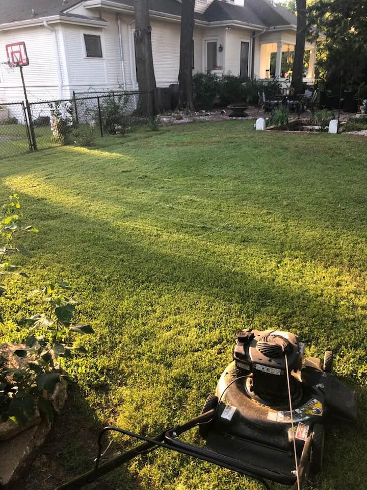 Darrah's yard